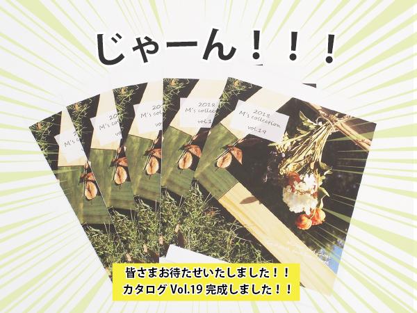 新カタログ告知01
